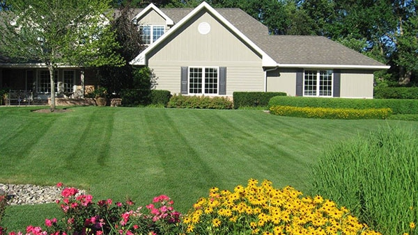 McEnery Lawn Care - Residential Lawn Care Chicago