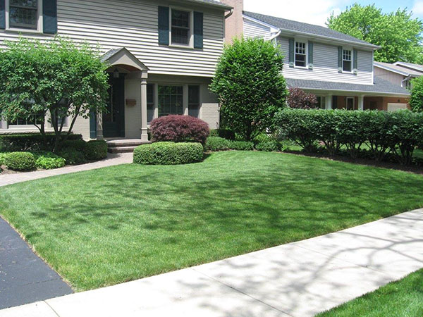 McEnery Lawn Care - About Us - Palatine Lawn Care Company
