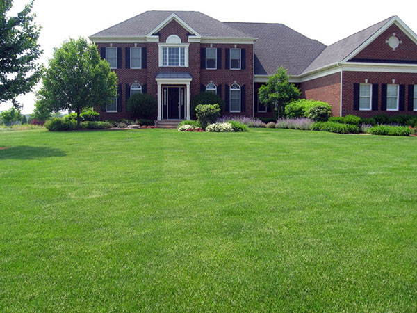 McEnery Lawn Care - Chicagoland Residential Lawn Care - Palatine Lawn Care Company