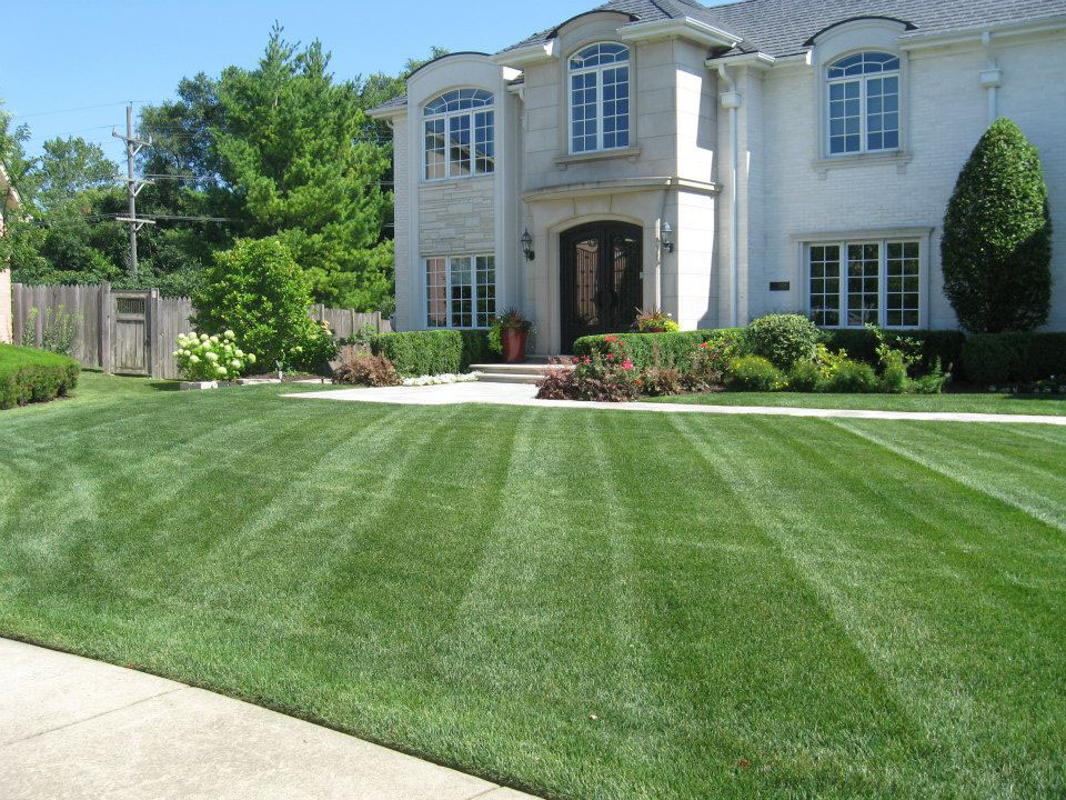 McEnery Lawn Care – Chicagoland Residential Lawn Care